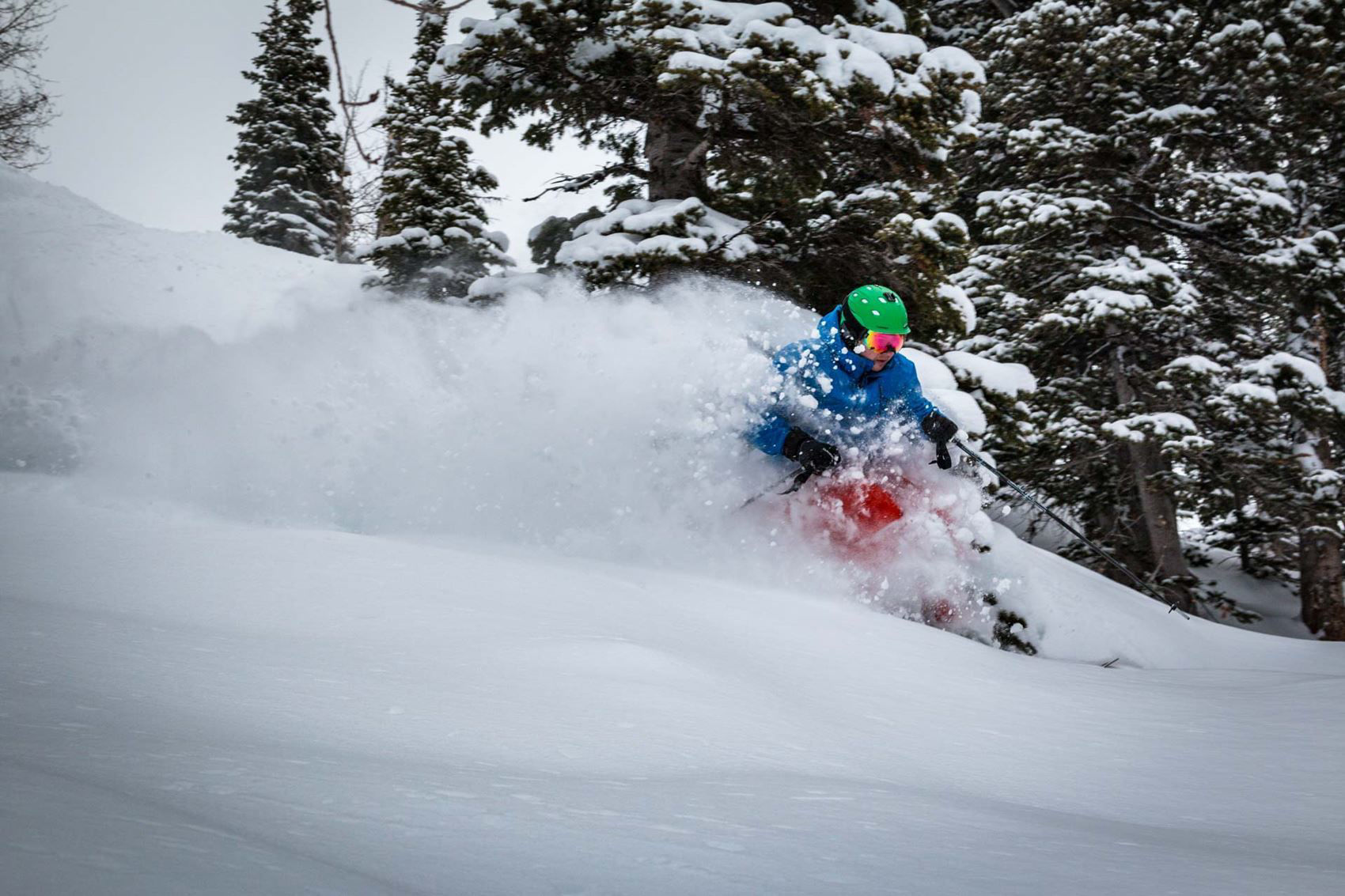 Picture of Season Pass Liability Waiver